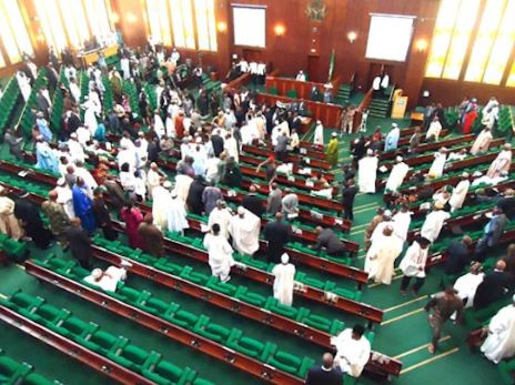 Breaking: House of Representatives approves N30,000 as the National Minimum Wage for workers in the country
