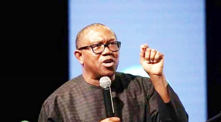 In Nigeria, nobody tells you the truth when you are in power – Peter Obi