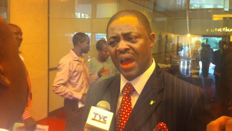 You are a barbarian if you don't understand the bible: Femi Fani-Kayode