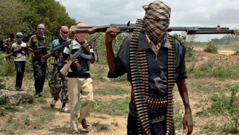 'Boko Haram spy' arrested in Yobe after giving out information that led to attack of troops
