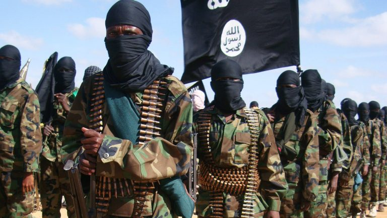 19 more Boko Haram fighters surrender to troops in Borno