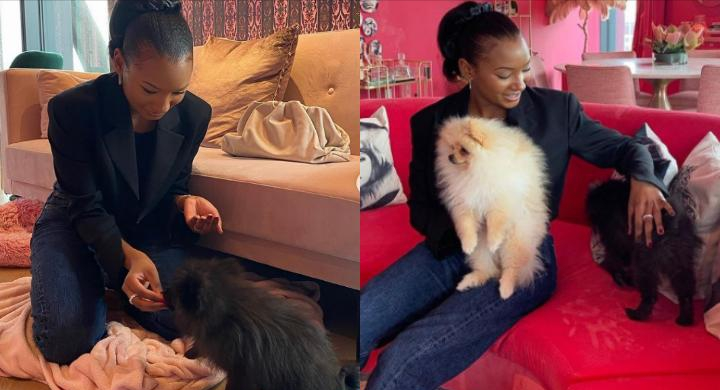 Baby sitting is exhausting – Temi Otedola laments after spending time with her nephews, DJ Cuppy's dogs